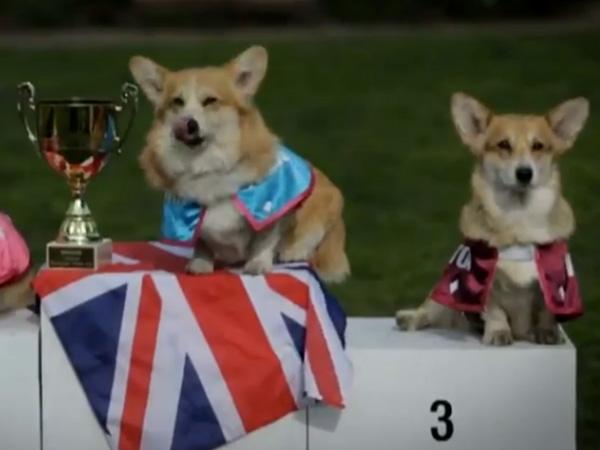 Alexandra Winner Trophy Barkingham Palace Gold Cup