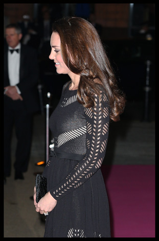 Kate Middleton Temperley London Action on Addiction Gala