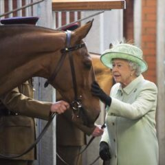 Queen Elizabeth Pets Horse Kings Troop 2013