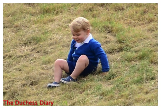 Prince George Blue Cardigan Beaufort Polo Club