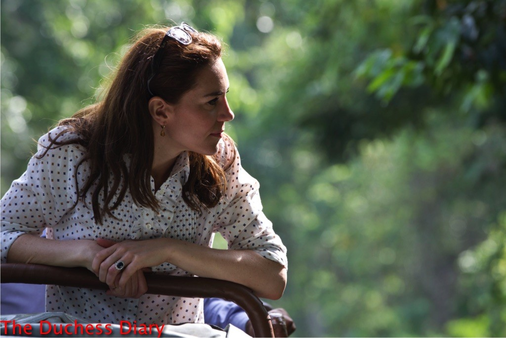 kate middleton looks on game drive kaziranga national park