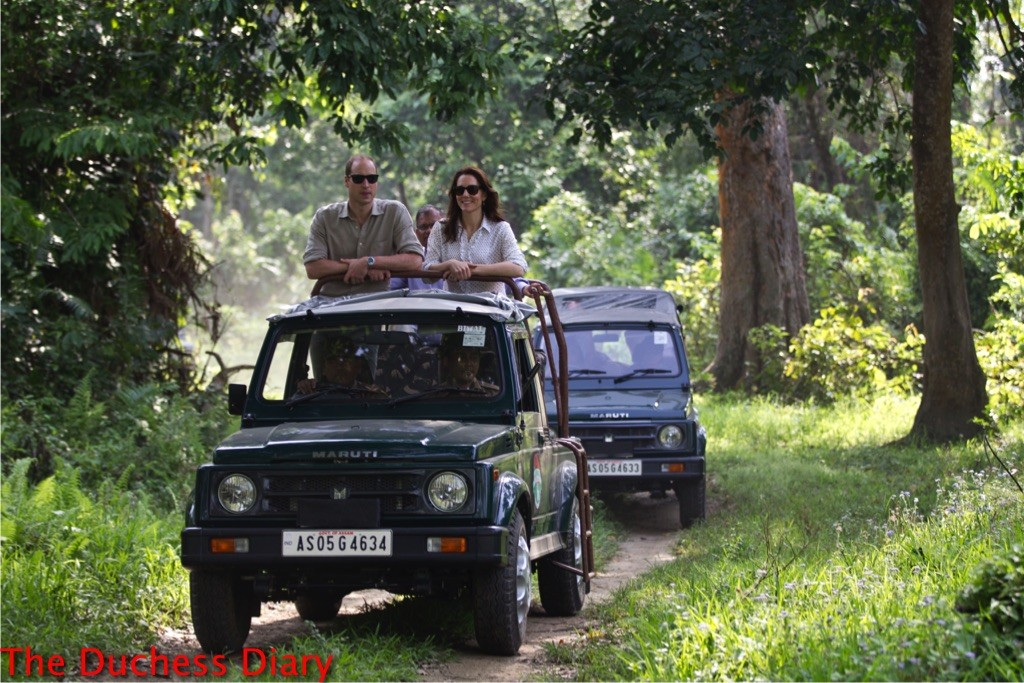 prince william kate middleton game drive kaziranga national park