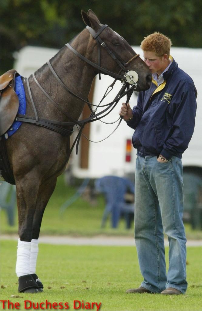prince harry rubs nose horse cirencester polo club