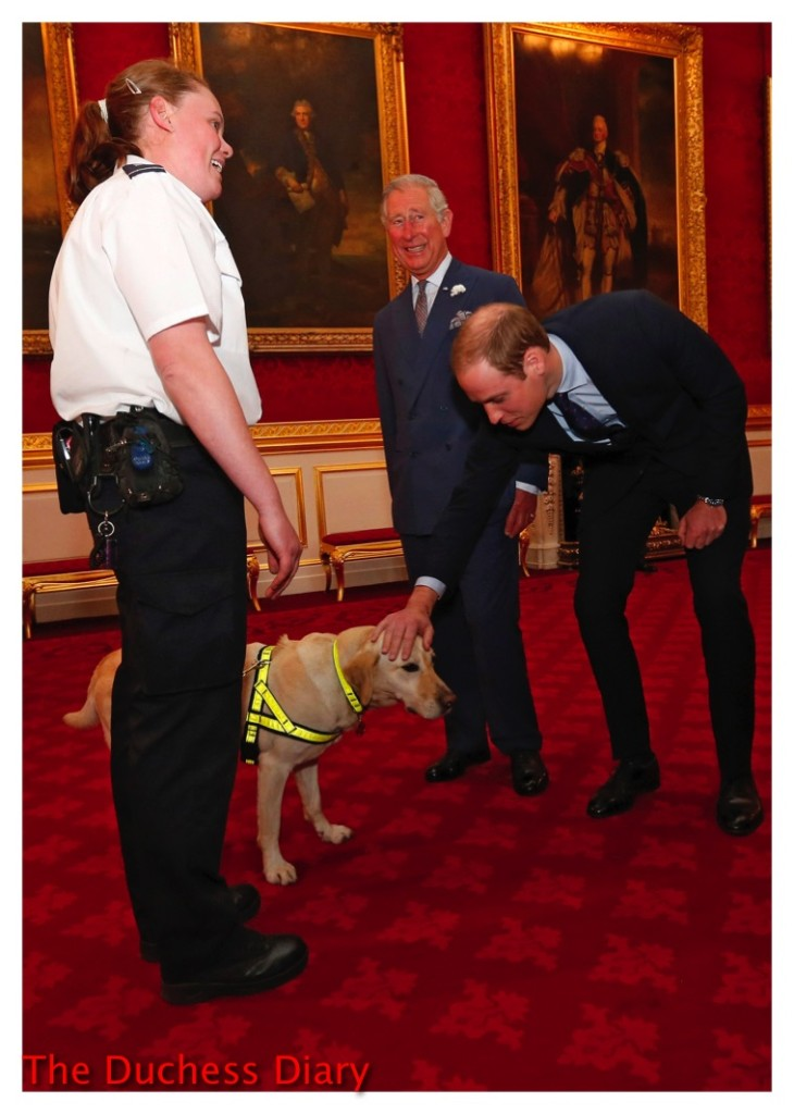 prince william pets customs dog clarence house