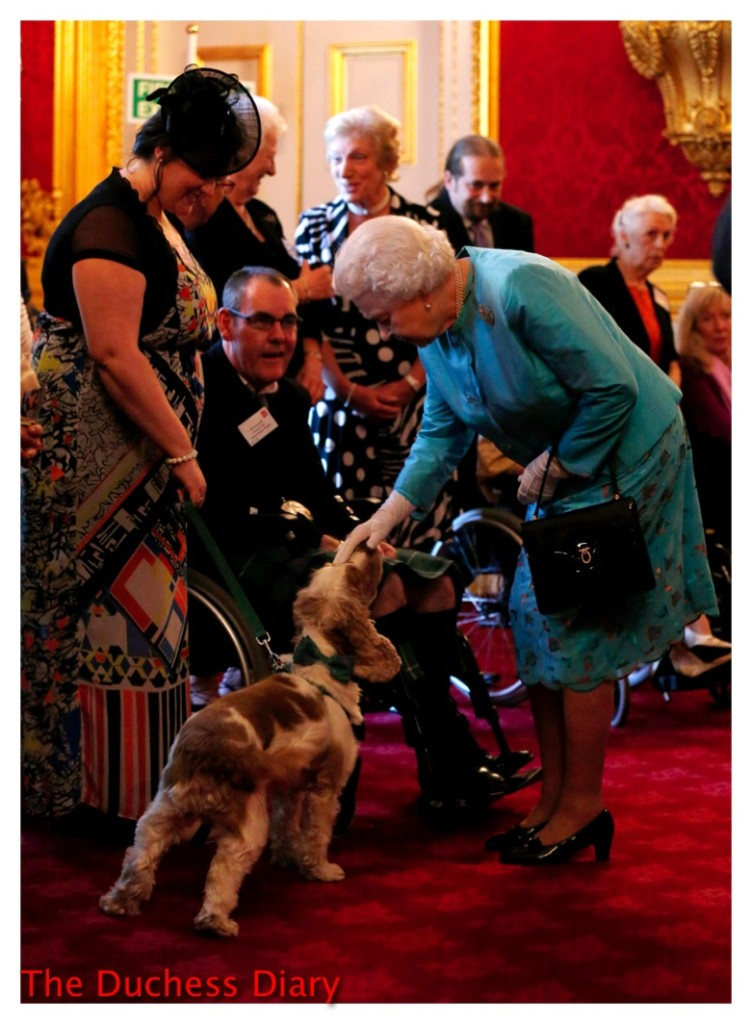 queen elizabeth pets dog leonard cheshire disability
