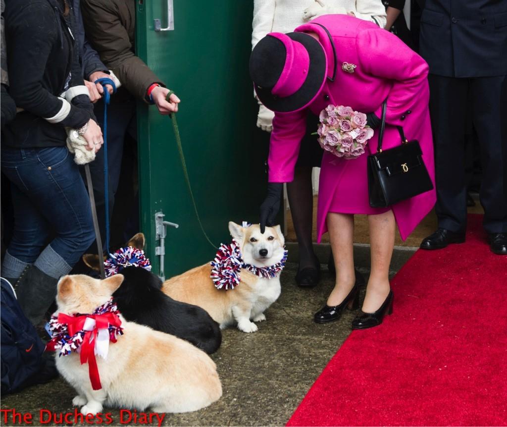 queen elizabeth pink coat pets corgi diamond jubilee tour 2012