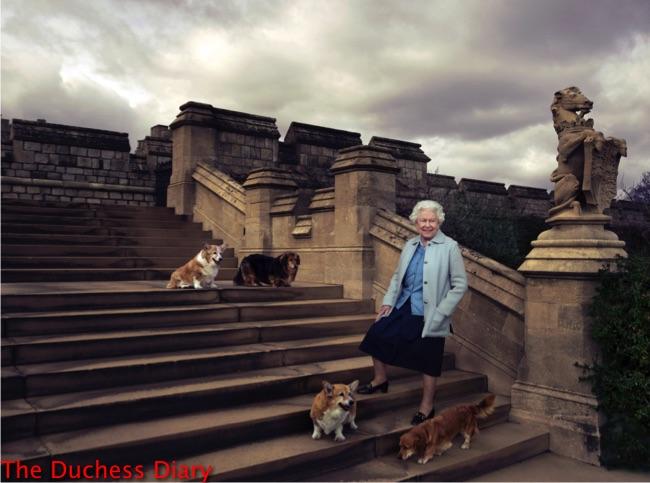 queen elizabeth poses corgis 90th birthday