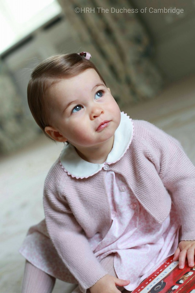 princess charlotte pink outfit first birthday