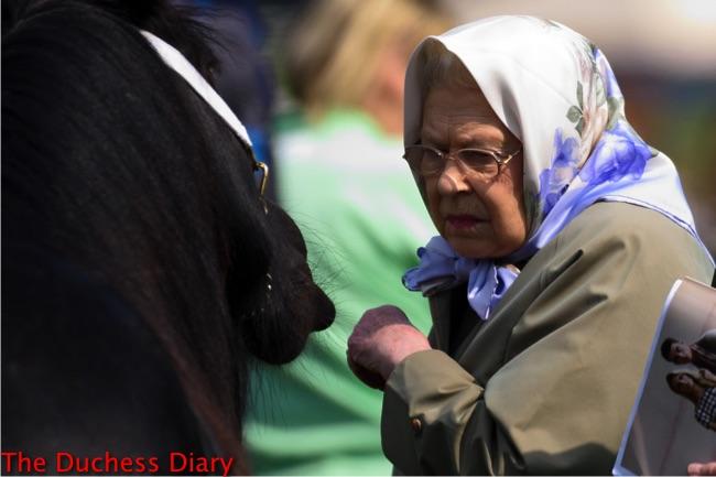 queen elizabeth II head scarf looks horse royal windsor horse show