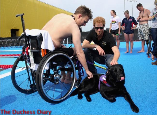 prince harry strokes black lab service dog invictus games